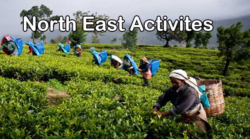 Activities to do in North East